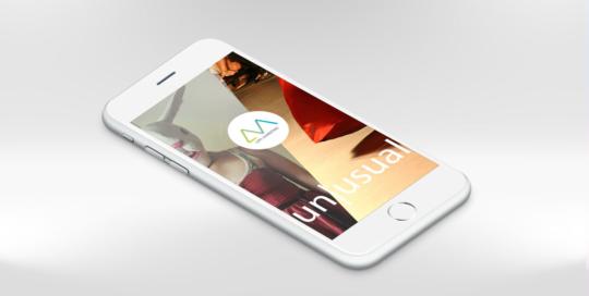 Webdesign, Lippl Marketing